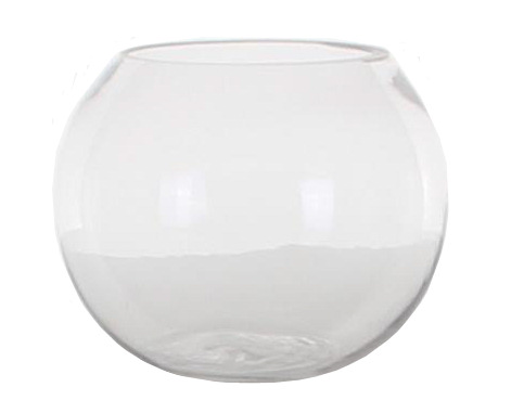Fish Bowl Hire